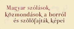 magyarszolasok